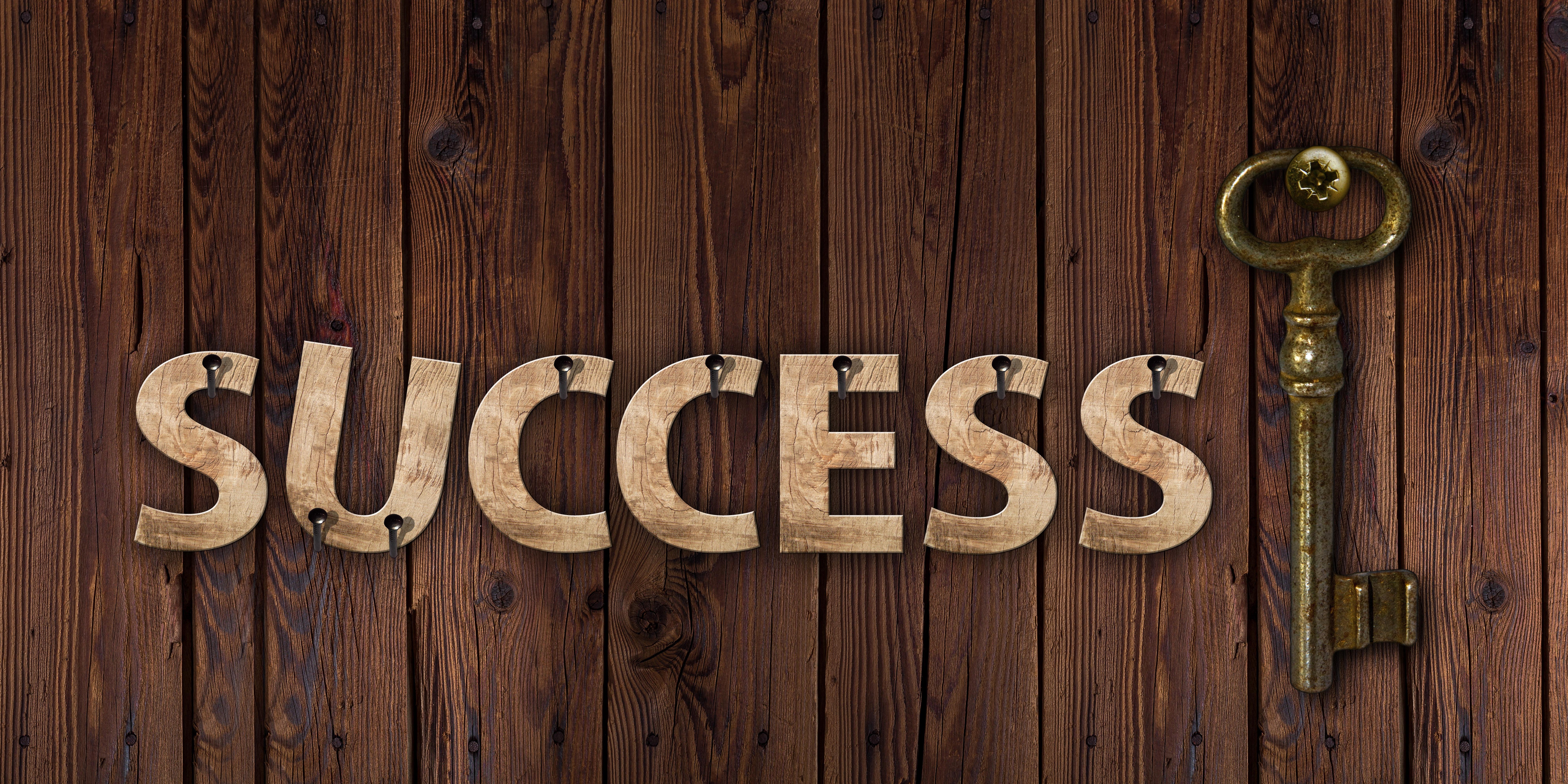Ayurveda Der Schlüssel zum Erfolg